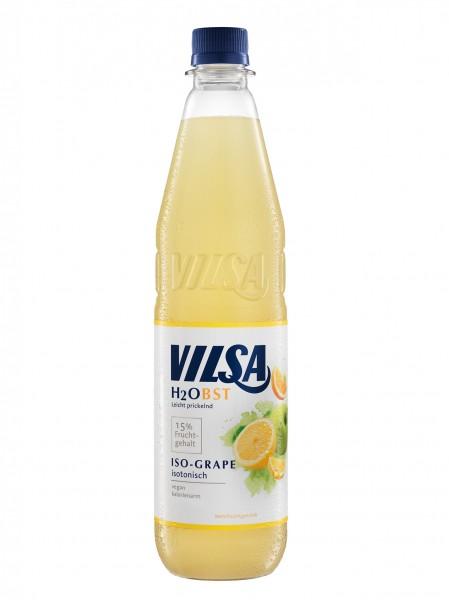 Vilsa H2Obst Iso Grape (12 x 0,75 l)